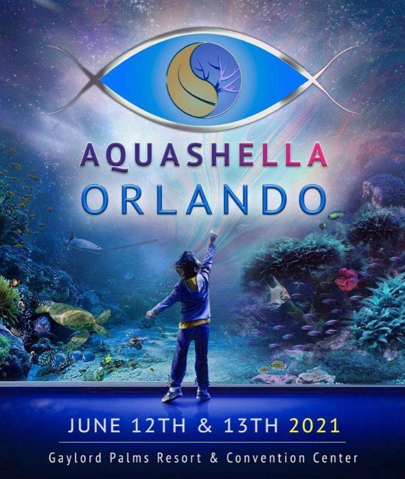 banner--aquashella2021
